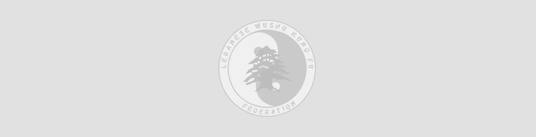 welcome to Lebanese wushu Federation